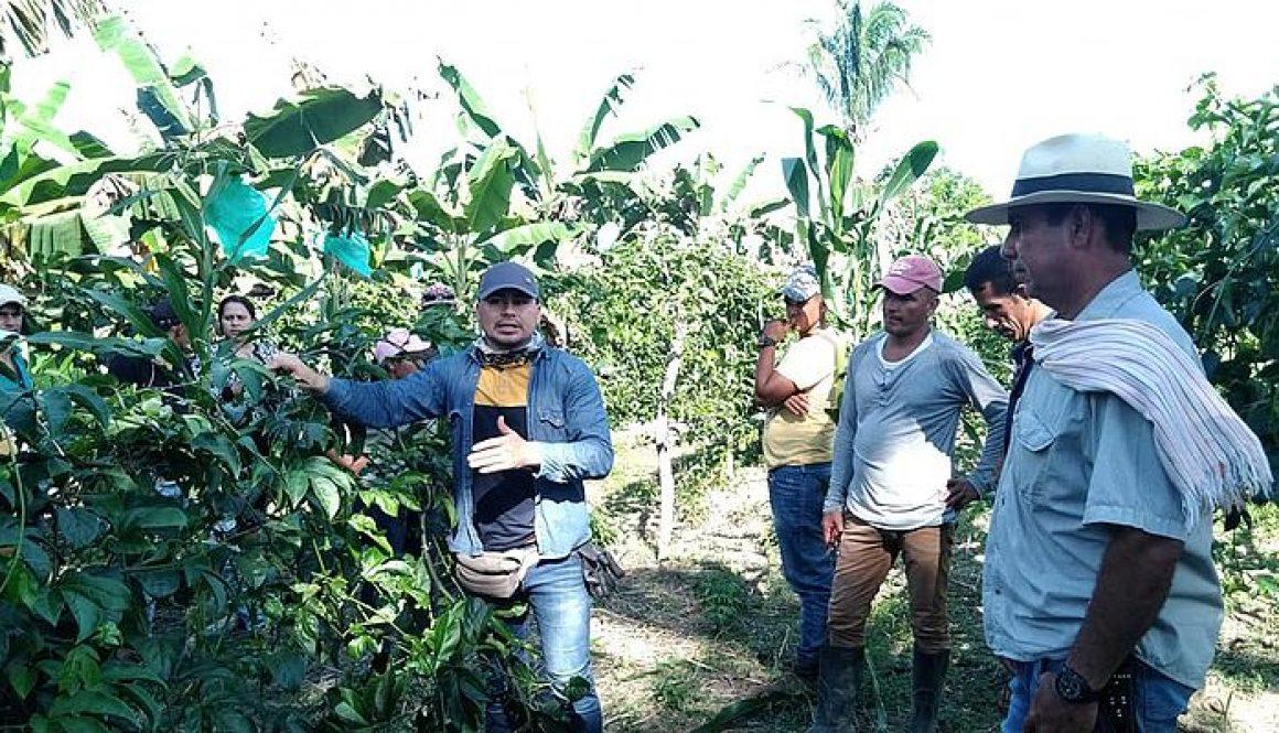 csm_4._El_curso_se_realizo_en_los_cultivos_de_maracuya_presentes_en_la_vereda_el_Oasis_y_Aguachica_del_muncipio_de_Arauquita._0b4613cb5c